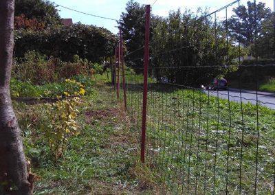 Ropotarnica - mestni vrt - ograja