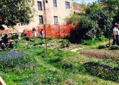 Ropotarnica - mestni vrt - zeleno