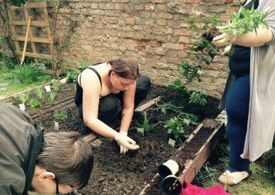Ropotarnica - mestni vrt -prostovoljstvo - sajenje