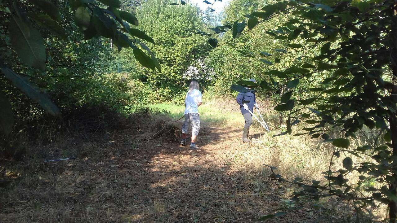 Ropotarnica - mestni vrt pod Gorco 1 - čiščenje