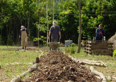 Social-integrational garden growing (5)